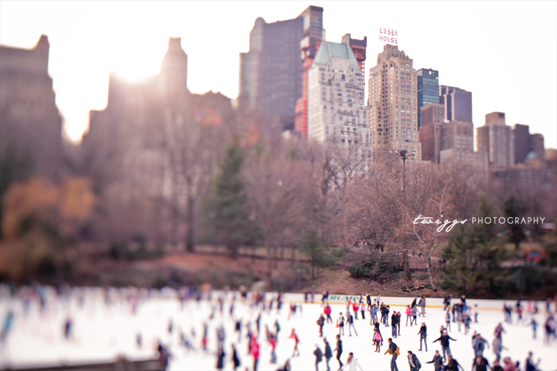 central-park-new-york-travel-photography