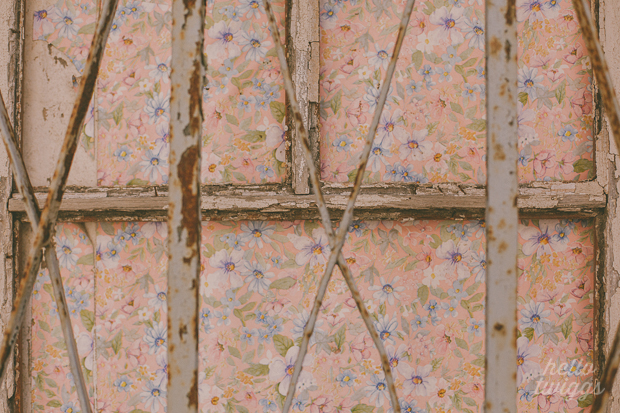 Floral Wallpaper in an abandoned house in Santarém