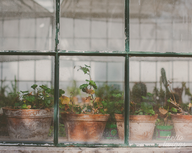 Greenhouse Fine Art Print