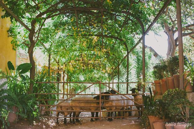 Quintas de Casamento de Charme, Quinta de Sant'Ana - Mafra, Fotografias por Claudia Casal // Hello Twiggs (35)