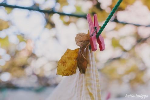 os últimos suspiros de outono // last fall breaths