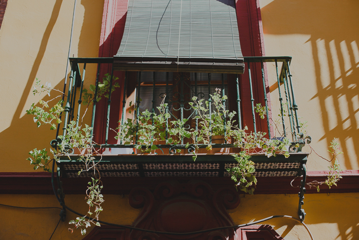 Seville Travel Photography by Claudia Casal * Hello Twiggs