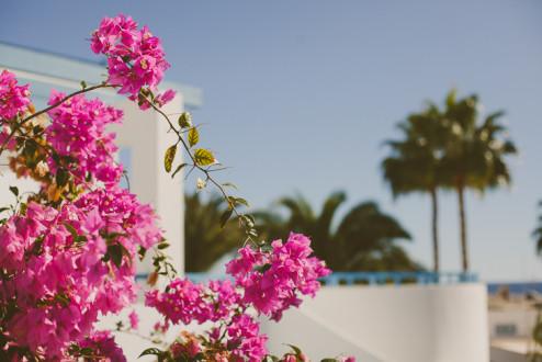 Travel to Lanzarote :: as cores desta ilha