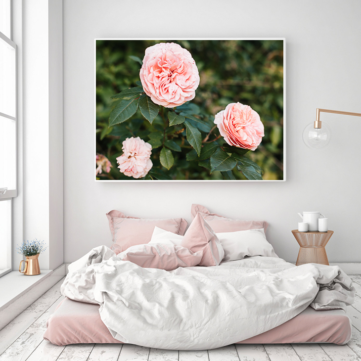Hello Twiggs Print Shop, English Roses Photograph